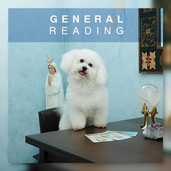 General Reading Master Image